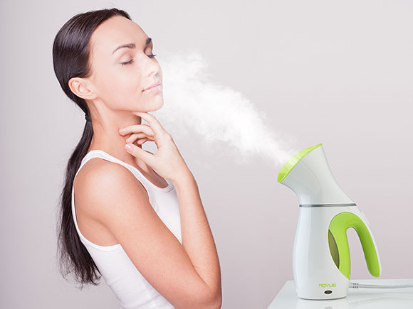 Rovus All In One Steamer